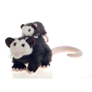 pammy Opossum & Petunia Possom head to North Carolina